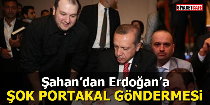 Şahan'dan Erdoğan'a şok Portakal göndermesi