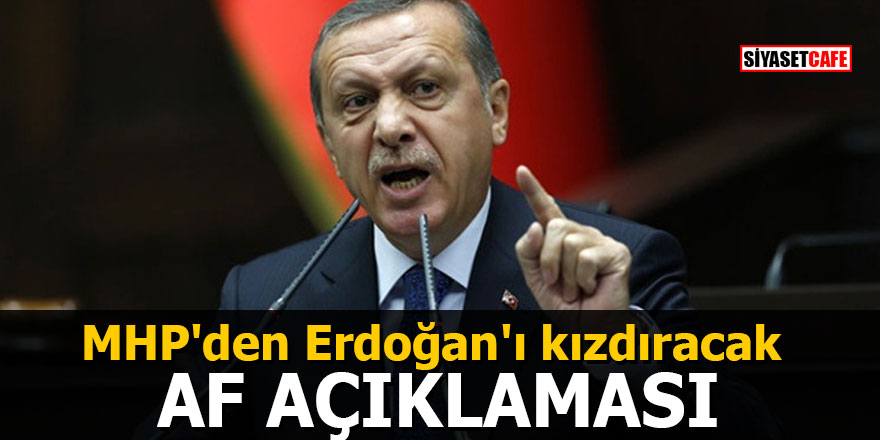 MHP'den Erdoğan'ı kızdıracak 'AF' açıklaması