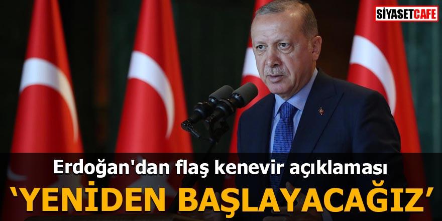 Erdoğan'dan flaş kenevir açıklaması
