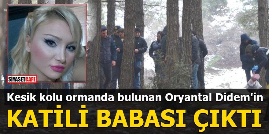 Kesik kolu ormanda bulunan Oryantal Didem'in katil zanlısı babası çıktı