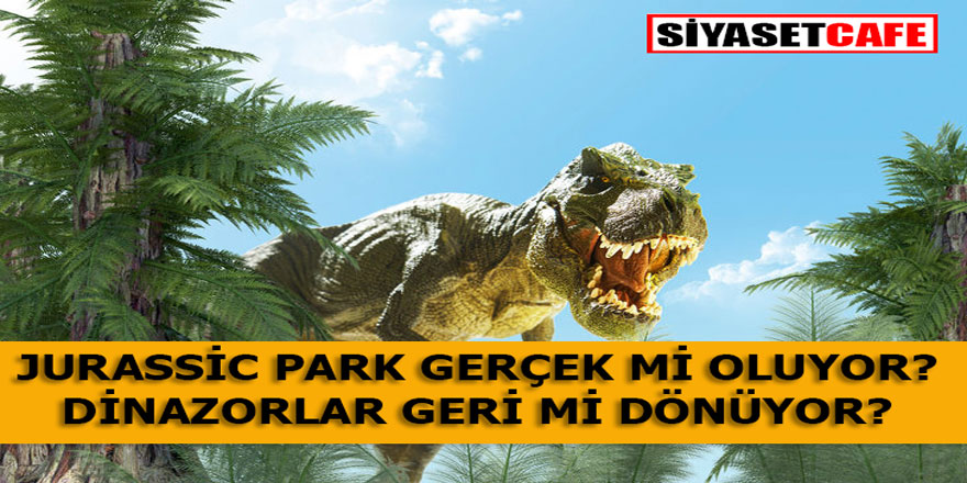 Jurassic Park Gerçek Mi Oluyor? Dinazorlar Geri Mi Dönüyor?