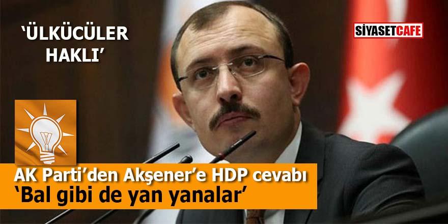 AK Parti'den Akşener'e HDP cevabı: Bal gibi de yan yanalar
