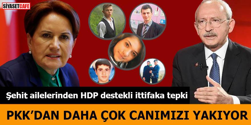 Şehit ailelerinden HDP destekli ittifaka tepki PKK'dan daha çok canımızı yanıyor
