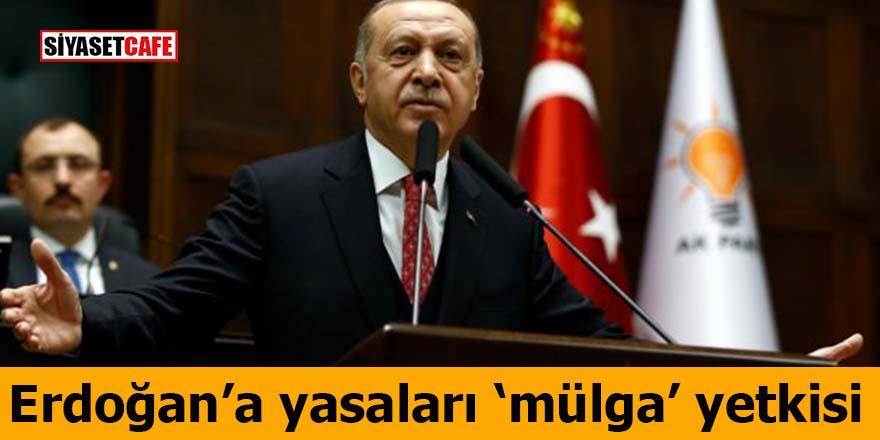 """Erdoğan'a yasaları """"mülga"""" yetkisi"""