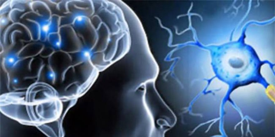 Türk dünyası nörologları MS kongresinde buluşacak
