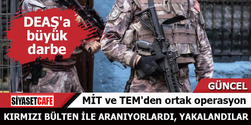 MİT ve TEM'den ortak operasyon Kırmızı bülten ile aranan kadınlar yakalandı