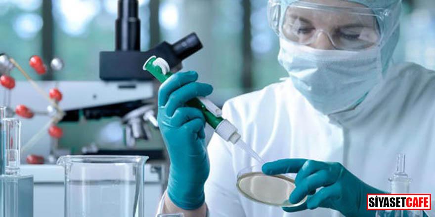 Korkutan rapor: 2040 yılında 29 milyon kişi kansere yakalanacak