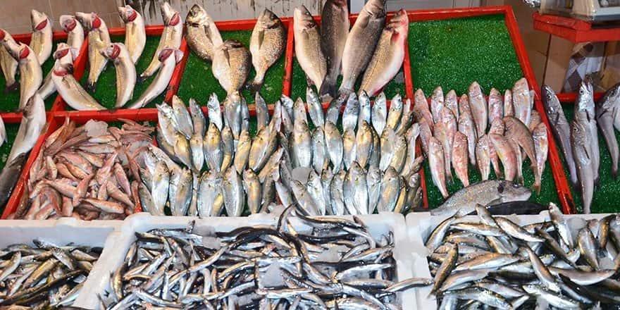 Balıkçıklar tanzim satışı istiyor