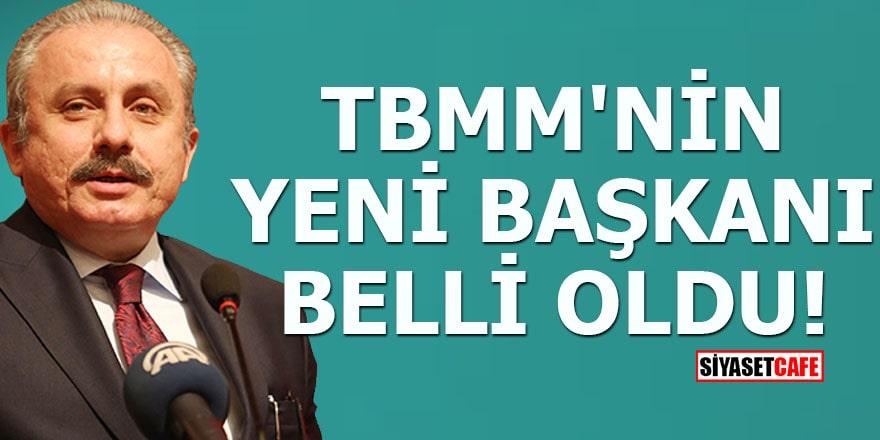 TBMM'nin yeni başkanı belli oldu