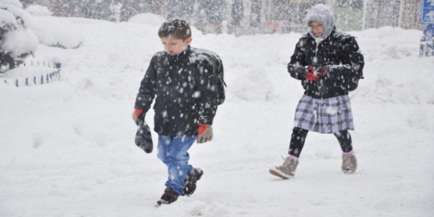 Kar nedeniyle 2 ilde okullar tatil edildi