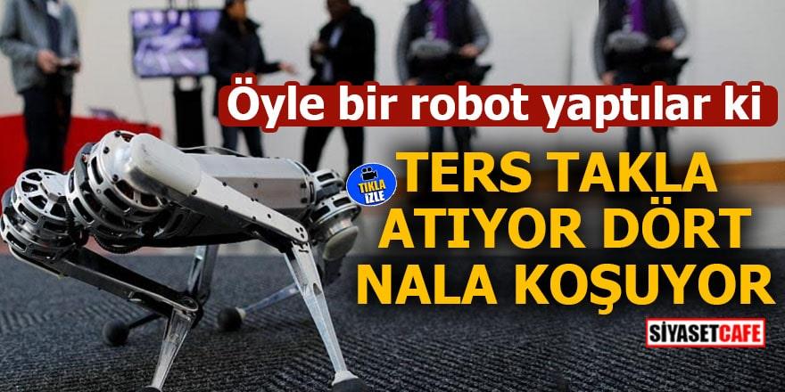 Öyle bir robot yaptılar ki Ters takla atıyor dört nala koşuyor