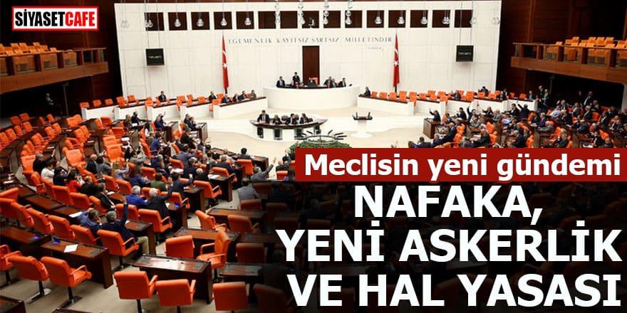 Meclisin yeni gündemi Nafaka, Yeni askerlik ve Hal yasası