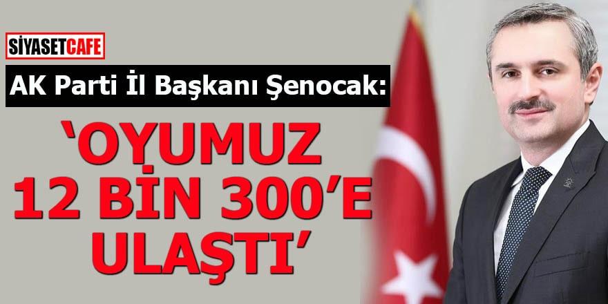 AK Parti İl Başkanı Şenocak: Oyumuz 12 bin 300'e ulaştı