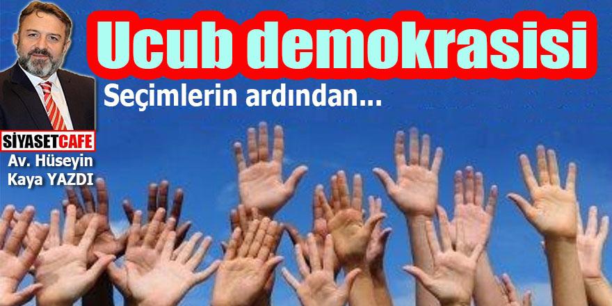 Ucub demokrasisi