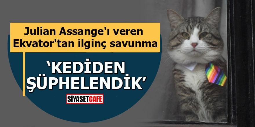 Julian Assange'ı veren Ekvator'tan ilginç savunma Kediden şüphelendik