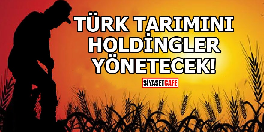 Türk tarımını holdingler yönetecek