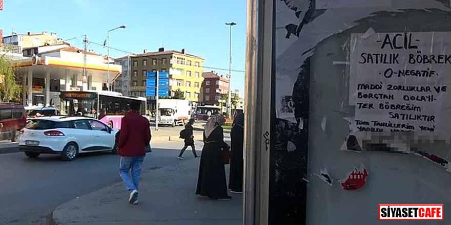 Sultangazi'de parklarda yaşayan bir vatandaş, böbreğini satılığa çıkardı