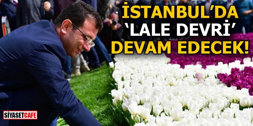 İstanbul'da 'Lale Devri' devam edecek!