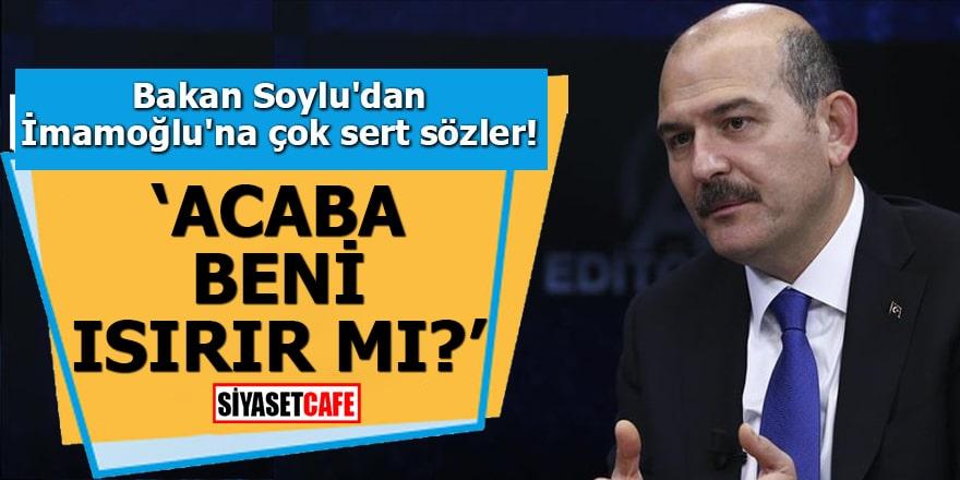 """Bakan Soylu'dan İmamoğlu'na çok sert sözler """"Acaba beni ısırır mı?"""""""