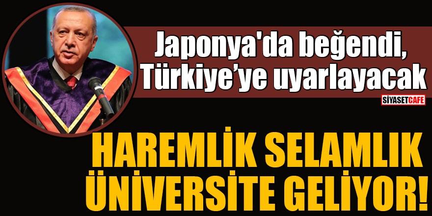 Erdoğan Japonya'da beğendi, Türkiye'ye uyarlayacak Haremlik selamlık Üniversite geliyor