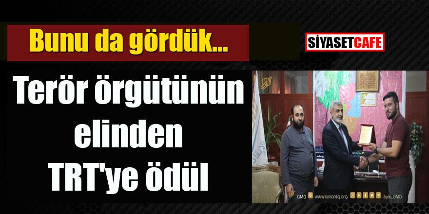 Terör örgütünün elinden TRT'ye ödül!