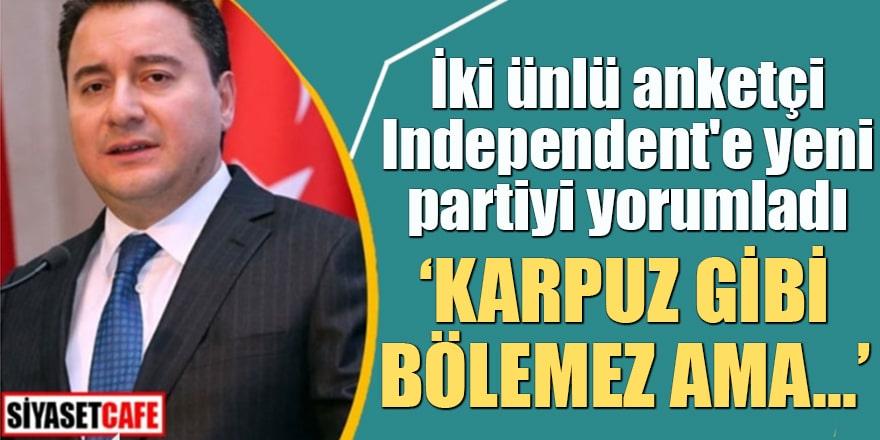 İki ünlü anketçi Independent'e yeni partiyi yorumladı Karpuz gibi bölemez ama...