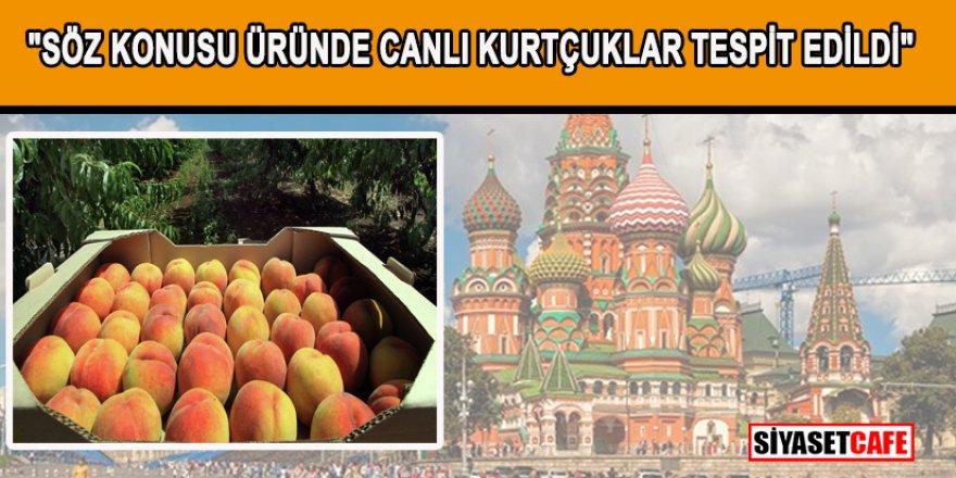 20 ton nektarin Türkiye'ye iade edildi