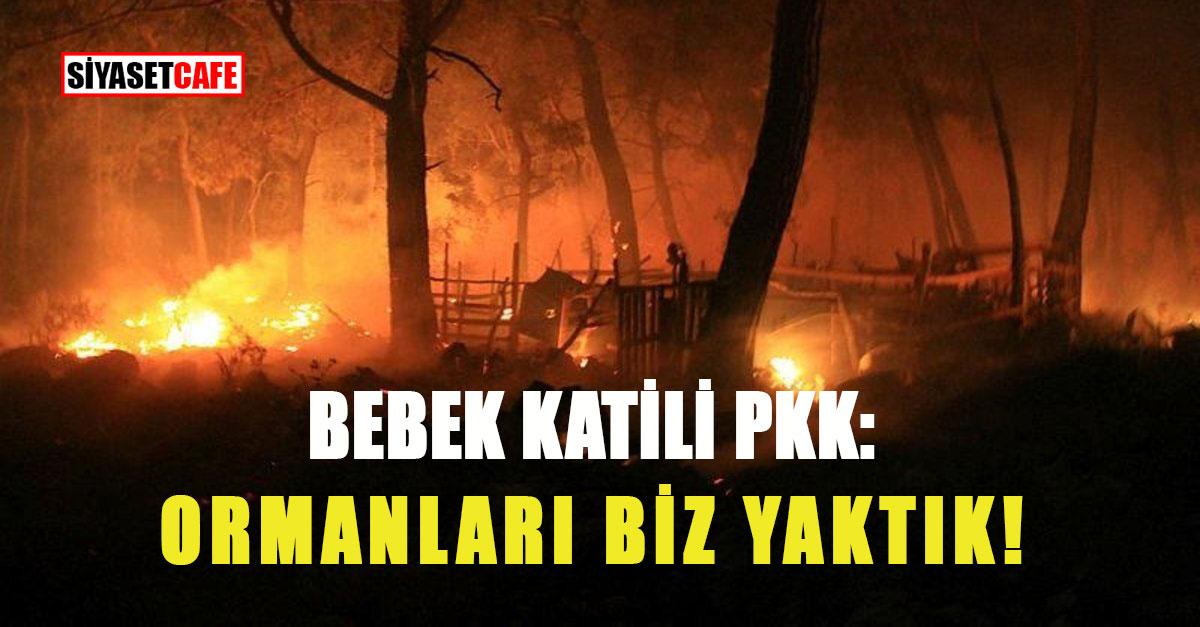 Flaş gelişme! Muğla'daki orman yangınını PKK üstlendi