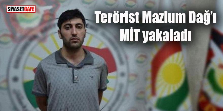 Terörist Mazlum Dağ'ı MİT yakaladı