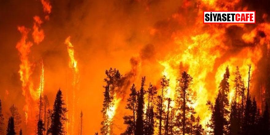 Korkutan yangın giderek büyüyor!