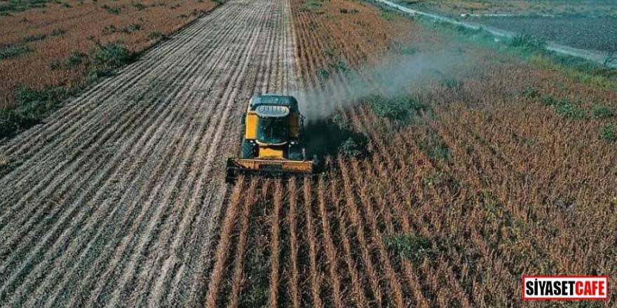 Bakanlık saat verip duyurdu! Çiftçiye destek ödemesi başlıyor
