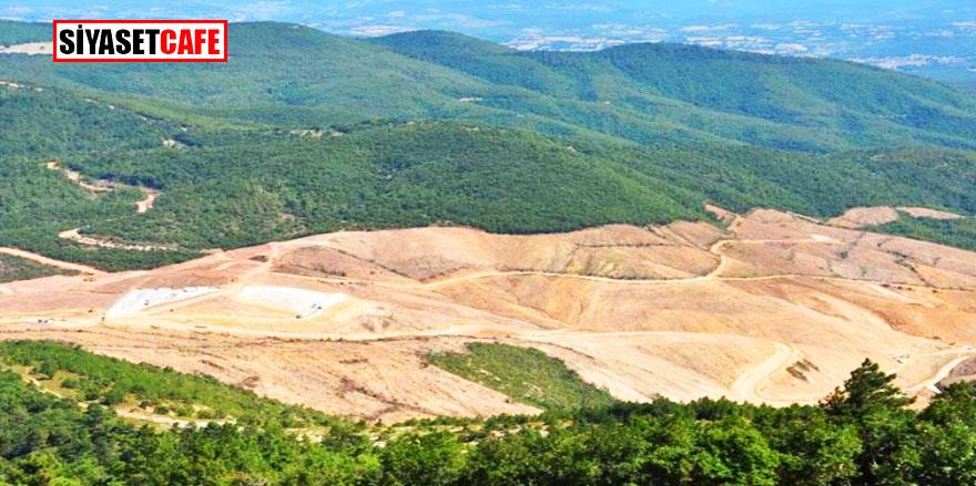 Son Dakika! Kaz Dağları'daki projeyi yürüten şirketten Flaş açıklama!