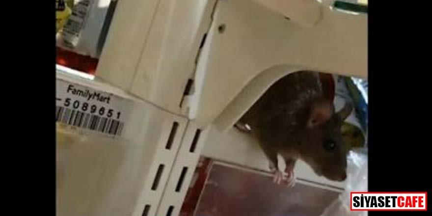 Ünlü süpermarkette fare rezaleti!