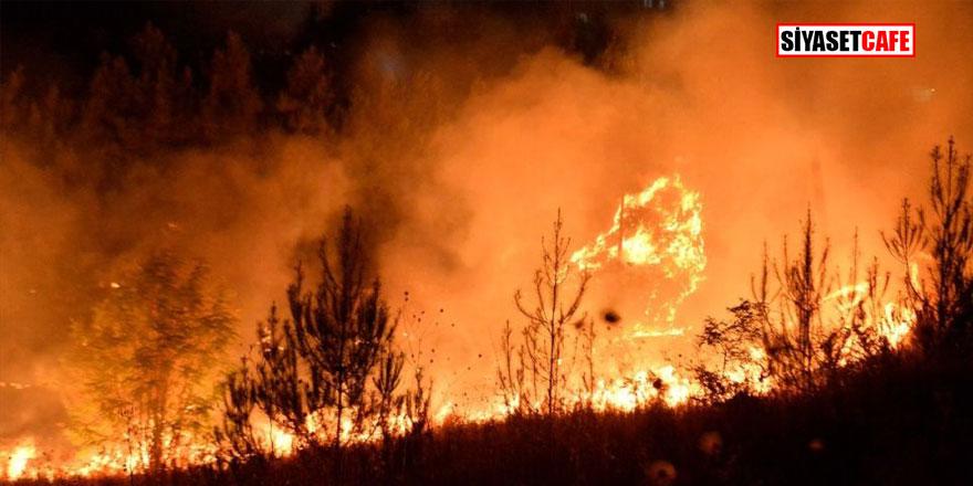 Son Dakika! Tarihi Mardin Kalesi'nde korkutan yangın