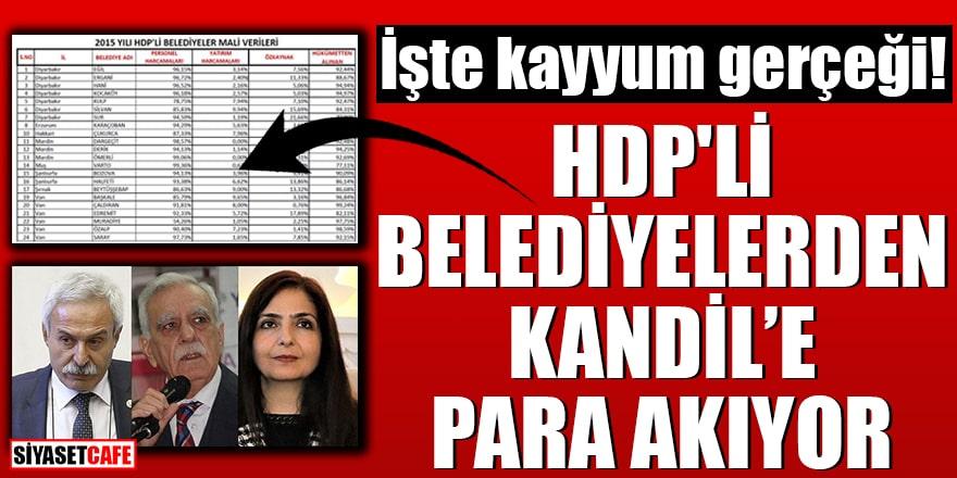 İşte kayyum gerçeği! HDP'li belediyelerden Kandil'e para akıyor