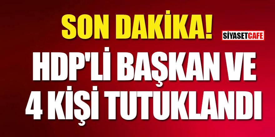 HDP'li Kulp Belediye başkanı ile birlikte 4 kişi tutuklandı!
