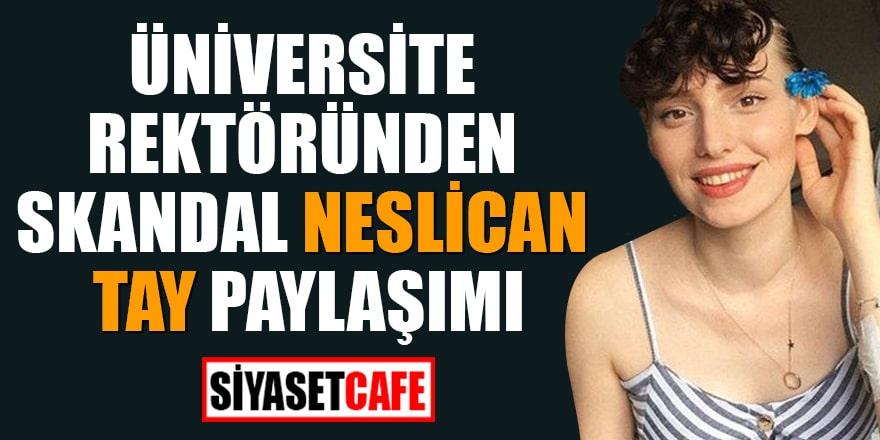 Üniversite Rektöründen skandal Neslican Tay paylaşımı