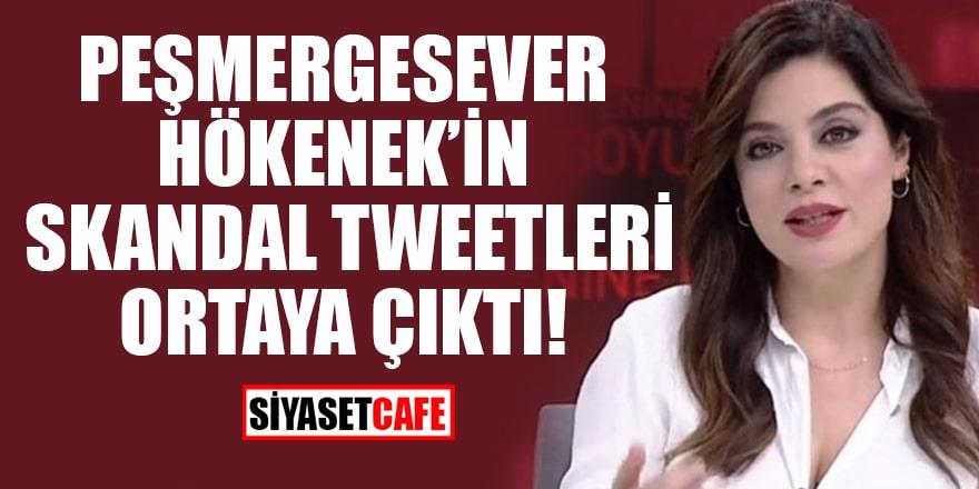 Peşmergesever Hökenek'in skandal tweetleri ortaya çıktı