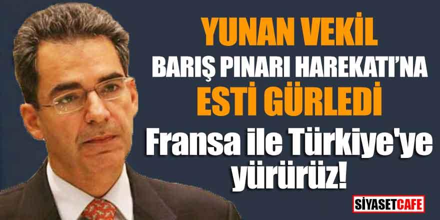 Yunan vekil Barış Pınarları Harekatına esti gürledi; Fransa ile Türkiye'ye yürürüz!