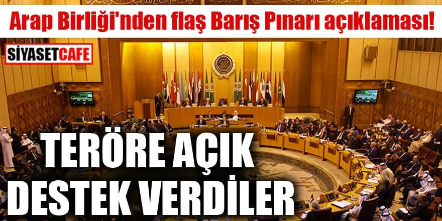 Arap Birliği'nden flaş Barış Pınarı açıklaması! Teröre açık destek verdiler
