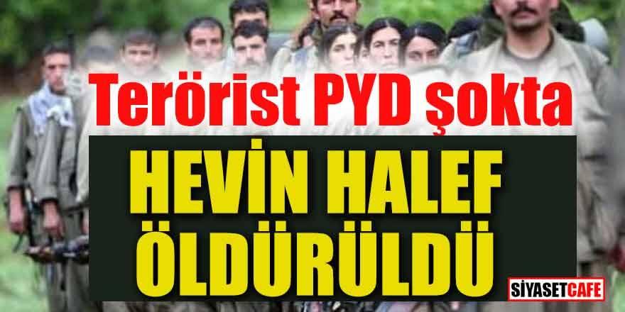 Terörist PYD şokta: Hevin Halef öldürüldü