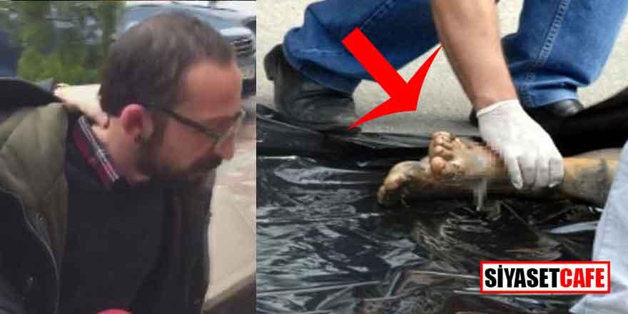 Kadıköy'deki kesik bacak cinayetinde kan donduran gelişme!