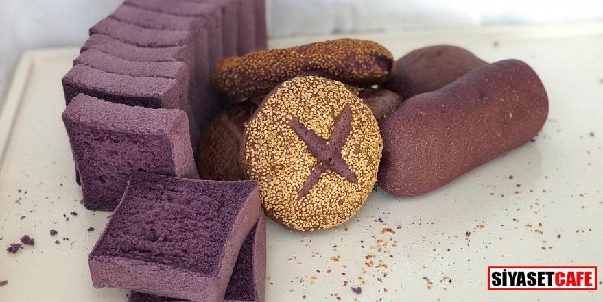 Malatya'da Japonların mor ekmeği üretildi: Faydaları inanılmaz!