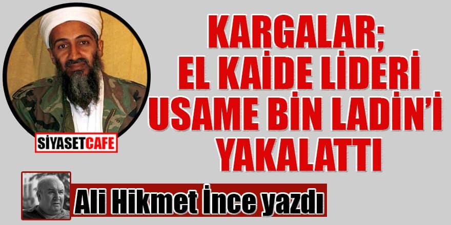 Ali Hikmet İnce yazdı: Kargalar; El Kaide Lideri Usame Bin Ladin'i Yakalattı