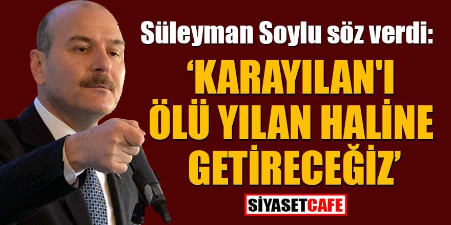 Süleyman Soylu: Karayılan'ı ölü yılan haline getireceğiz!