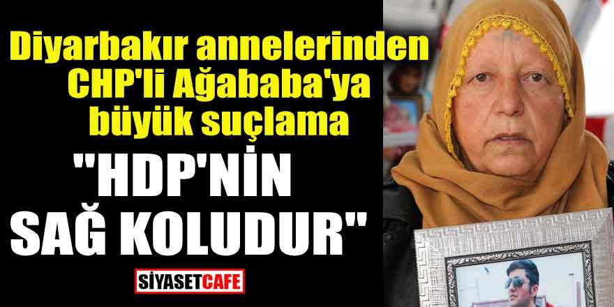 Diyarbakır annelerinden CHP'li Ağababa'ya büyük suçlama