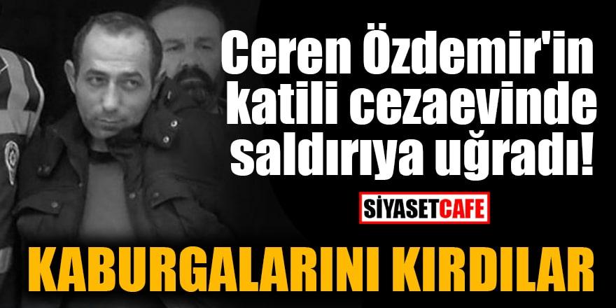 Ceren Özdemir'in katili cezaevinde saldırıya uğradı! Kaburgalarını kırdılar