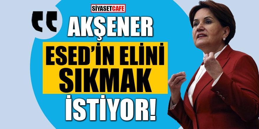 Meral Akşener, Esed'in elini sıkmak istiyor!