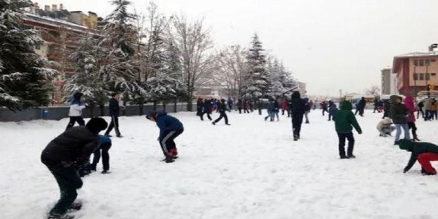 9 ilde okullar kar nedeniyle tatil edildi: İşte o iller