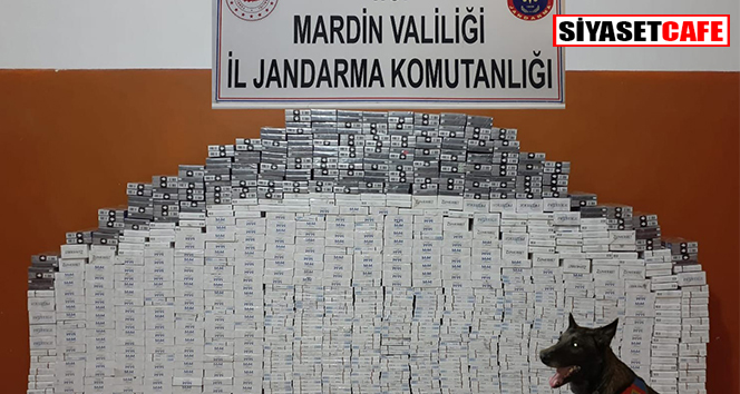 Mardin'de bin 470 paket kaçak sigara ele geçirildi